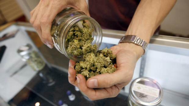 What Marijuana Users can Expect with Legalization